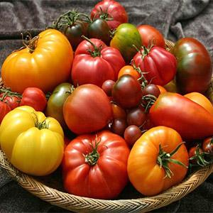 image for a 'Farm To Table' Cooking Class: The Endless Bounty of Fresh Tomatoes with Chef Richard McPeake