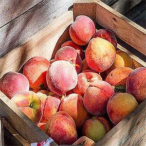 image for a Farmers Market Cooking That's Simply Peachy!